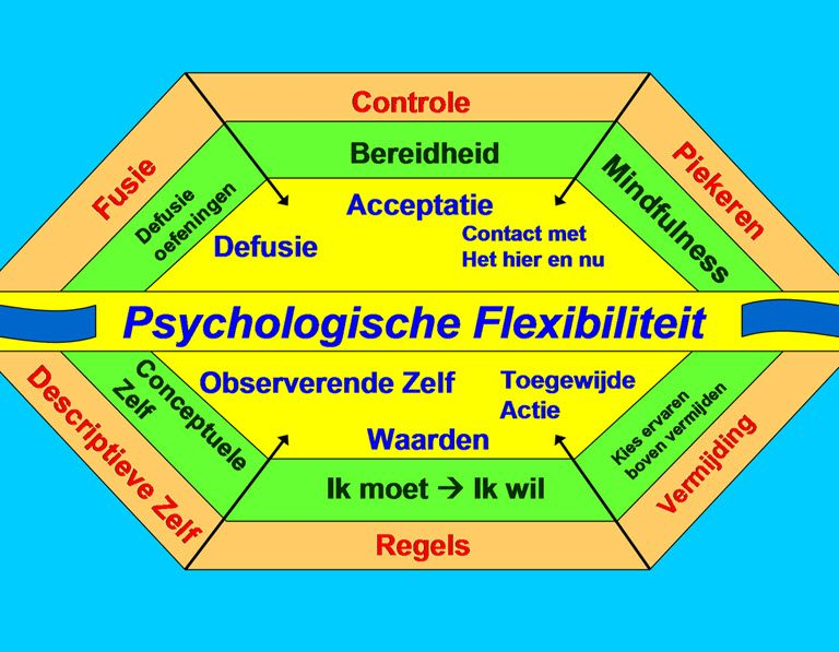 act_psychologische_flexibiliteit-1-768x597